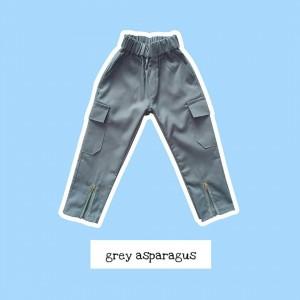 SKP 1.3 GRAY ASPARAGUS SKIGGO PANTS